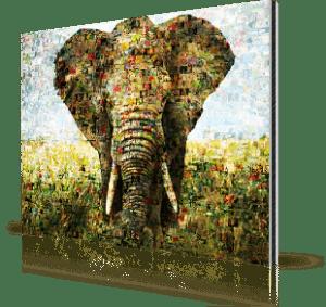 Fotomozaiek op Alu-Dibond met olifant