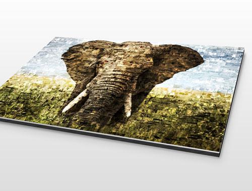Fotomozaiek op aluminium gedrukt met voorbeeld olifant