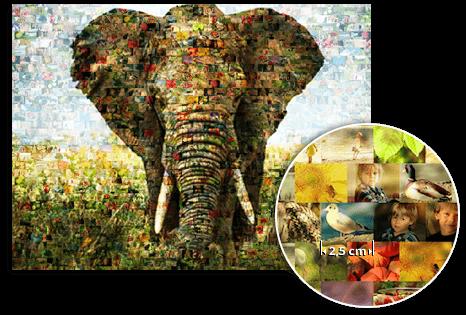 fme_landing_detail_mozaiek van olifant